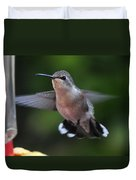 Female Anna's Hummingbird Duvet Cover