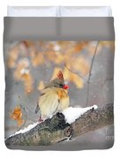 Female Cardinal In Snow Duvet Cover
