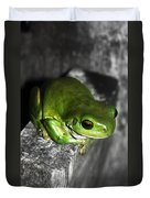 Fence Frog Duvet Cover