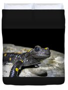 Fire Salamander Salamandra Salamandra Duvet Cover