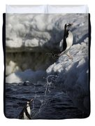 Gentoo Penguins Leaping Antarctica Duvet Cover