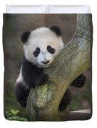 Giant Panda Cub In Tree Duvet Cover