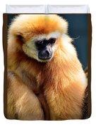 Gibbon Monkey  Duvet Cover