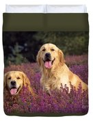 Golden Retriever Dogs In Heather Duvet Cover