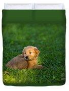 Golden Retriever Puppy Duvet Cover