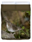 Gray-cheeked Thrush Duvet Cover