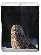Great Gray Owl Pictures 789 Duvet Cover