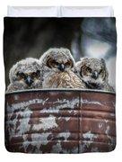 Great Horned Owl Chicks Duvet Cover