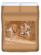 Greater Kudu Mother And Baby Duvet Cover