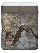 Greater Mouse-tailed Bat Rhinopoma Microphyllum Duvet Cover
