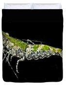Green For Shrimp Duvet Cover