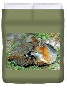 Grey Fox Duvet Cover