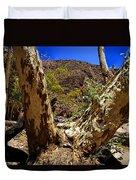 Gum Tree At The Creek V2 Duvet Cover