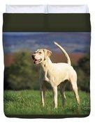 Harrier Dog Duvet Cover