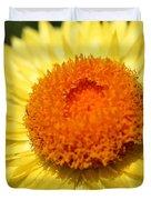 Helichrysum Bracteatum Named Strawburst Yellow Duvet Cover