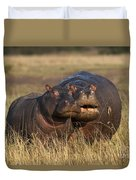 Hippo Cow And Calf Duvet Cover