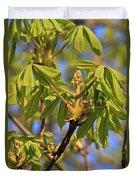 Horse Chestnut Duvet Cover