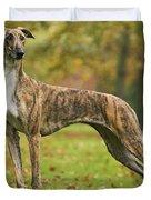 Hungarian Greyhound Duvet Cover