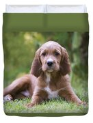 Irish Setter Puppy Duvet Cover