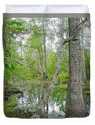 Jean Lafitte Swamp Duvet Cover