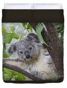 Koala Joey Australia Duvet Cover