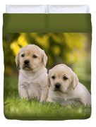 Labrador Puppies Duvet Cover