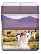 Lama On The Laguna Colorada In Bolivia Duvet Cover
