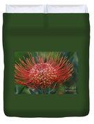 Leucospermum - Pincushion Protea - Tropical Sunburst Protea Flower Hawaii Duvet Cover