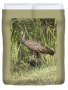 Limpkin In The Glades Duvet Cover