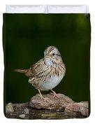 Lincoln Sparrow Duvet Cover