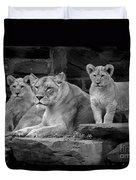 Lioness And Cubs Duvet Cover