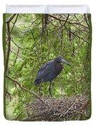 Little Blue Heron Nesting Texas Duvet Cover