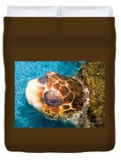 Loggerhead Sea Turtle Duvet Cover