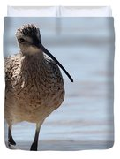 Long-billed Curlew Duvet Cover