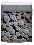 Lorimar Grapes Duvet Cover