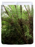 Magical Tree In Forest Duvet Cover