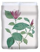 Magnolia Discolor, Engraved By Legrand Duvet Cover