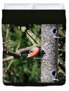 Male Bullfinch Duvet Cover