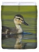 Mallard Duck Swimming In Marsh Pond Duvet Cover
