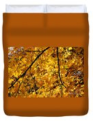 Maple Tree In Yellow Fall Colors Duvet Cover