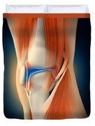 Medical Illustration Showing Duvet Cover