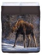 Morning Stroll Duvet Cover