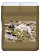 Mountain Goat On Mount Evans Duvet Cover