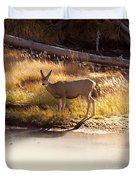 Mule Deer   #3942 Duvet Cover