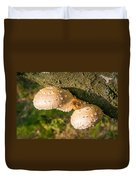 Mushroom On Tree Trunk Duvet Cover
