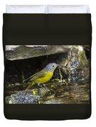 Nashville Warbler Duvet Cover
