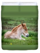 New Born Foal, Iceland Purebred Duvet Cover