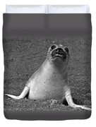 Northern Elephant Seal Weaner Duvet Cover