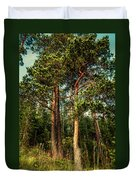 Northern Forest  Duvet Cover