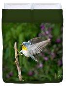 Northern Parula Warbler Duvet Cover